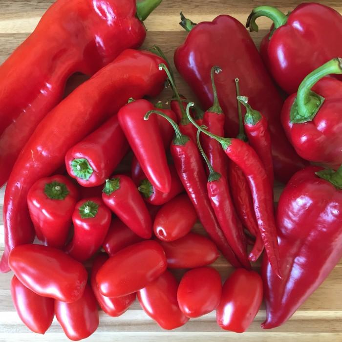 Paprika-Chilli-Paste-2